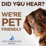National Dog Day – Pet Friendly now at Lake Lanier Islands!