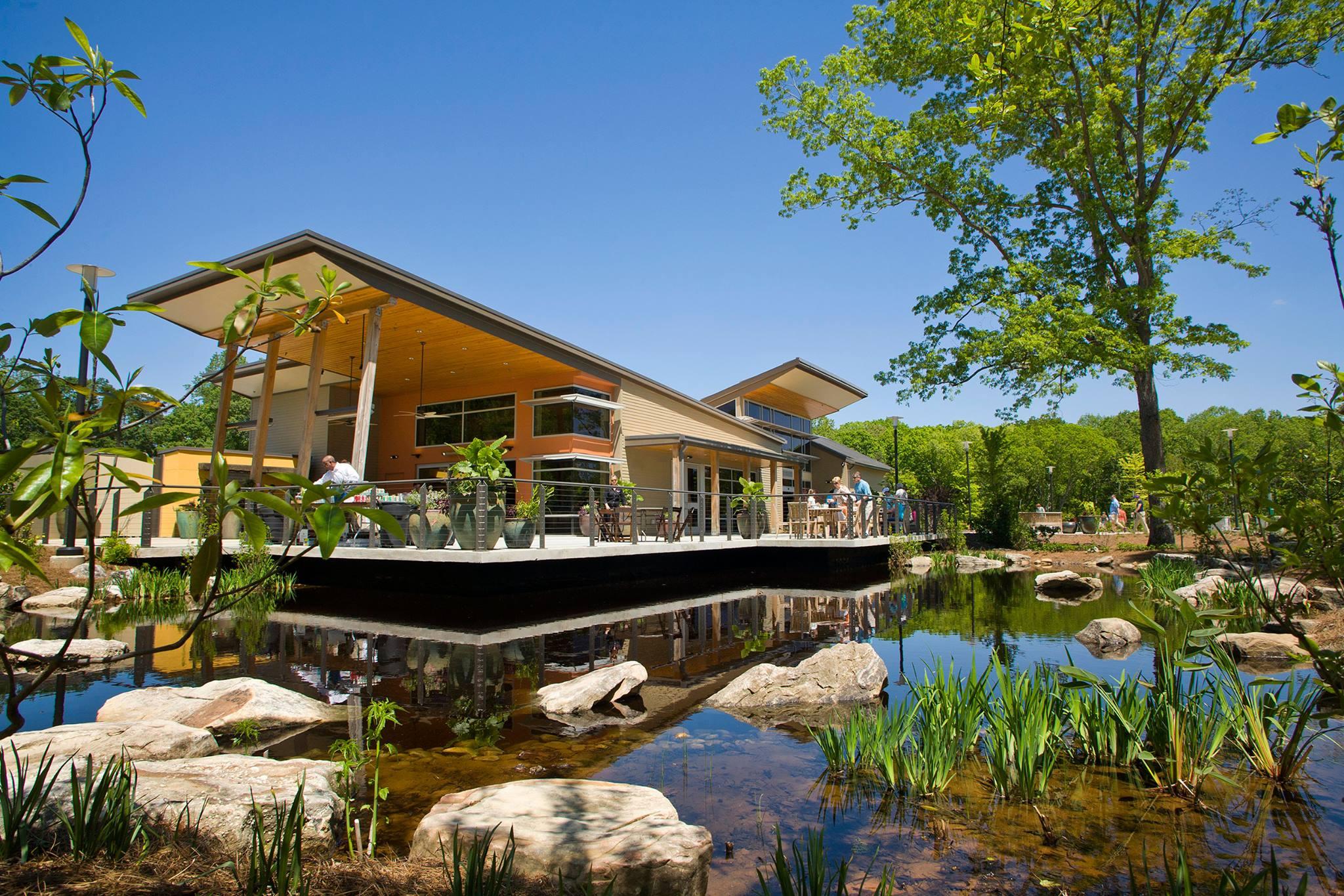 Botanical gardens gainesville garden ftempo for Botanical gardens gainesville ga