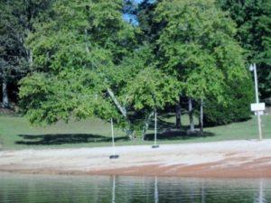 Long Hollow Park on   Lake Lanier