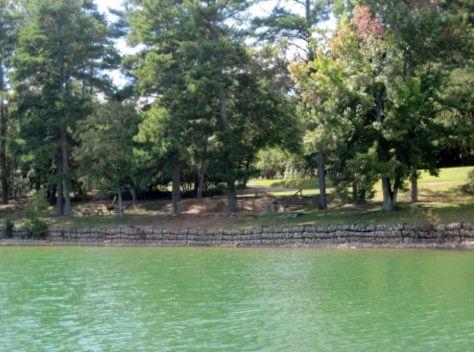 shoal-creek-campground-picnic-area-lake-lanier
