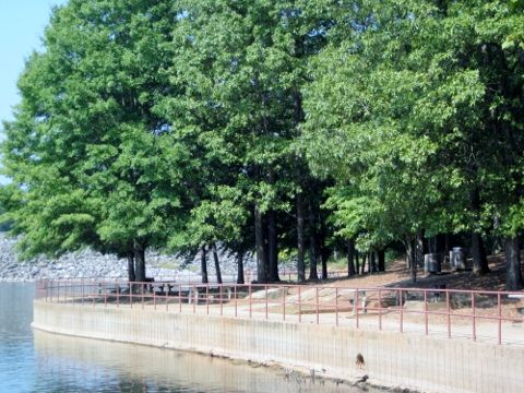 west-bank-park-picnic-area-lake-lanier
