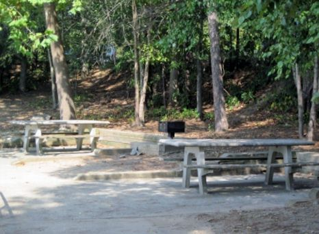 west-bank-park-picnic-area2-lake-lanier